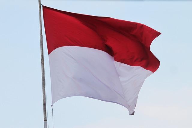 flag-857988_640