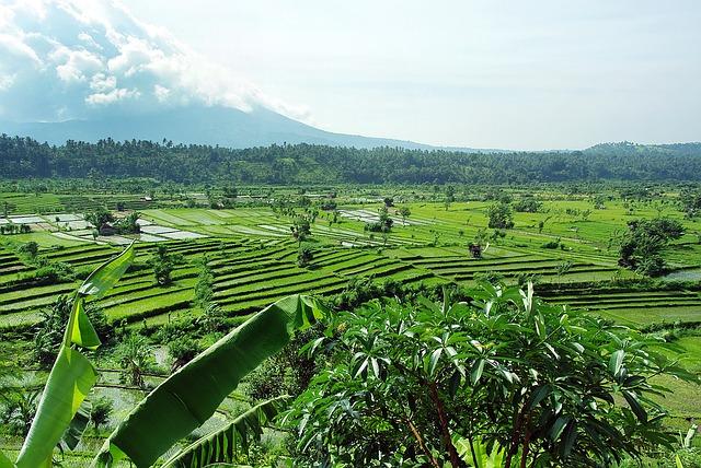 indonesia-1459416_640
