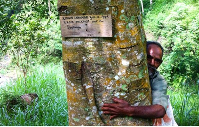 Sumber foto: www.mongabay.co.id