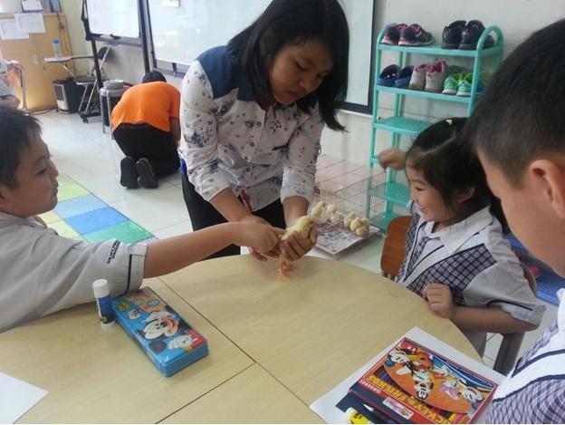 pendidikan1